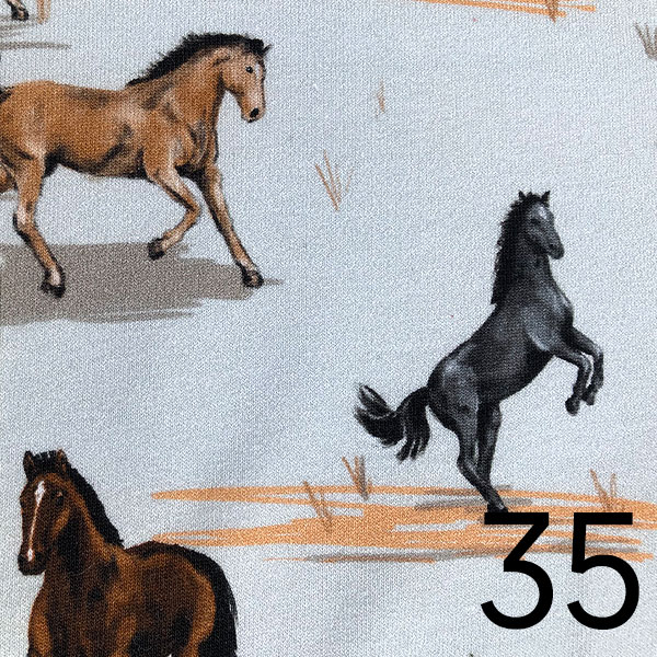 35 - Jersey, Pferde